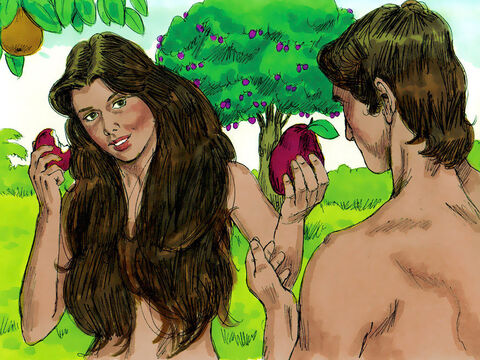 The woman saw that the fruit of the tree looked good for eating. She also desired to know about good and evil and gain wisdom so she took some of the forbidden fruit and ate it. She gave some to Adam, who was with her, and he ate it too. – Slide 5