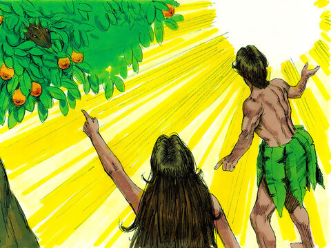 Adam answered, 'I heard you in the garden, and I was so afraid because I was naked, that I hid.' God replied, 'Who told you that you were naked? Have you eaten from the tree that I commanded you not to eat from?' Adam answered, 'The woman you put here with me gave me some fruit from the tree, and I ate it.' – Slide 8