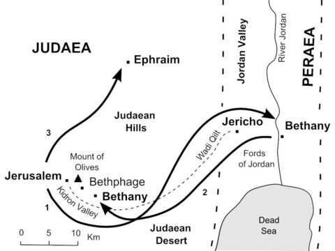 Jesus's journeys near Jerusalem. <br/>1. Jesus leaves Jerusalem and follows the road down to Jericho, then crosses the River Jordan to Bethany beyond the Jordan. (John 10:40-42)<br/>2. Hearing of the death of his friend Lazarus, Jesus returns to Bethany near Jerusalem and raises Lazarus from the dead. (John 11:1-44)<br/>3. Jesus withdraws to Ephraim to avoid being arrested by the chief priests. (John 11:54) – Slide 7