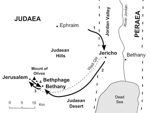 Jesus enters Jerusalem<br/>1. Jesus and His disciples approach Jericho where Jesus heals a blind man. (Mark 10:46-52)<br/>2. Jesus climbs the road from Jericho towards Jerusalem and sends two disciples ahead to borrow a donkey. (Mark 11:1-7) <br/>3. Jesus rides down the hillside from Bethany and enters Jerusalem on a donkey. (Mark 11:8-10)<br/>4. After a brief visit to the Temple courtyard, Jesus returns to Bethany to stay overnight. (Mark 11:11) – Slide 8