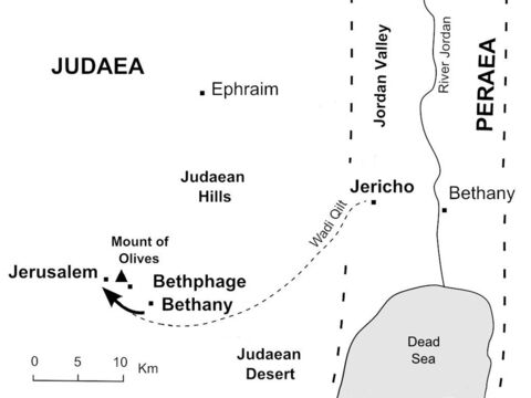Jesus rides down the hillside from Bethany and enters Jerusalem on a donkey. (Mark 11:8-10) – Slide 34
