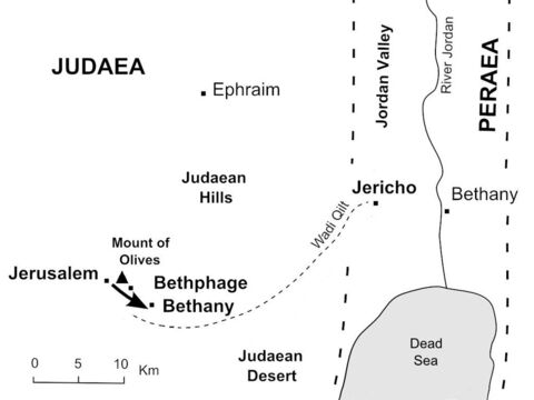 After a brief visit to the Temple courtyard, Jesus returns to Bethany to stay overnight. (Mark 11:11) – Slide 35