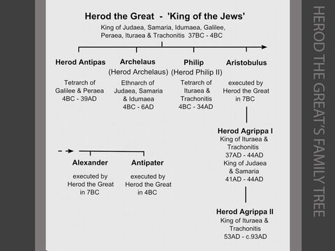 Herod the Great's family tree. <br/>1. Herod the Great had been ruling Palestine for over thirty years before the birth of Jesus in 5 or 6 BC. He was the first foreigner to become king of the Jewish nation, his father being from Idumaea (Edom) and his mother from the Nabataean Kingdom of Arabia Petra. He ruled for thirty-three years (37BC – 4BC) as a friend and ally of Rome and was given the title 'King of the Jews' by the Roman senate. After Jesus's birth, Herod ordered a massacre of all the infants in Bethlehem. (Matthew 2:1-23). When Herod died in 4BC he left his kingdom to three of his sons.<br/>2. Herod Antipas became ruler ('tetrarch') of Galilee and Peraea (4BC – 39AD). He ruled from his capital at Tiberias on the western shore of the Sea of Galilee. He divorced his first wife in order to marry Herodias, the wife of his half-brother Herod Philip.  He imprisoned and beheaded John the Baptist in 28AD for criticising this marriage (Mark 6:14-28 & Luke 3:19-20), and Pilate sent Jesus to him for judgement in 30AD. (Luke 23:7-12)<br/>3. Archelaus reigned (as 'ethnarch') in Judaea, Samaria and Idumaea (Edom) taking the place of his father Herod from 4BC to 6AD. (Matthew 2:22) This prompted Mary and Joseph to move to Nazareth, in Galilee - outside his jurisdiction. Archelaus was deposed by the Romans in 6AD, and Judaea (together with Samaria and Idumaea) became a Roman province administered by a procurator - who resided in the Roman capital at Caesarea. Pontius Pilate, the fifth procurator appointed in 26AD, condemned Jesus to death in 30AD. (Matthew 27:11-26)<br/>4. Philip (Herod Philip II) ruled as tetrarch of Ituraea and Trachonitis to the north east of the Sea of Galilee from 4BC to 34AD. (Luke 3:1) His capital, Caesarea Philippi was the site of Peter's recognition of Jesus as the 'Messiah' or 'Christ' in the summer of 29AD. (Matthew 16:13-16) <br/>5. Herod Agrippa I, the grandson of Herod the Great, became king of Ituraea and Trachonitis in 37AD, following the death of Philip (Herod Philip II), his uncle. In 41AD, the Romans extended his kingdom to include Judaea and Samaria. On his death in 44AD (Acts 12:20-23), Judaea and Samaria once more came under direct Roman rule under the procurator, Felix. Shortly before his death, Herod Agrippa executed the apostle James (the brother of John), and arrested Peter, who had a miraculous escape. (Acts 12:1-19)<br/>6. Herod Agrippa II (who was only a child when his father Herod Agrippa I died in 44AD) became King of Ituraea and Trachonitis in 53AD. He ruled for over forty years. In 59AD, he interviewed Paul about his religious beliefs. (Acts 26:1-32) – Slide 10