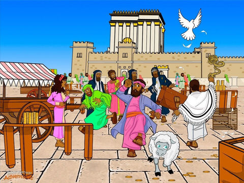 "Yeshua rode through the city streets to the Temple. Outside, hundreds of Roman soldiers guarded the gates. Pilate, the Roman governor, did not want any bad behavior during the upcoming Feast. Inside, the courtyard had become a marketplace. Traders were buying and selling animals, and changing money. They were cheating the people instead of honoring God. Yeshua clenched His fists. The Temple was never meant to be a place to buy and sell things. It was meant to be place to worship Yah their God. <br/>The next morning, Yeshua returned to the Temple and made a whip out of rope. Cracking it above His head, He kicked over the traders' tables and knocked over their stools. ""How dare you turn My Father's house into a market!"" He thundered. <br/>Sheep bleated and oxen grunted. Coins scattered across the courtyard and rolled down the shiny marble steps. Yeshua said to the people, ""It is written, 'My house is a house of prayer. But you have made it a place for robbers!'"" When the chief priests learned what had happened, they were furious. ""Let us waste no more time. We must find a way to put this man to death!"" – Slide 6"