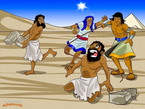 "One day, when Moses was grown up, he discovered that he was a Hebrew. He set off to visit his real family who lived in a part of Egypt called Goshen. While he watched them making mud bricks, he saw an Egyptian man beating a Hebrew slave. <br/>Moses' heart was filled with anger. ""How dare you hit that slave!"" he shouted. Moses killed the Egyptian and buried his body in the sand. The next day, Moses went out and saw two Hebrew men fighting each other. ""Why are you hitting your friend?"" he asked one of the men. ""Who are you to tell me what to do?"" the man answered. ""Will you kill me like you killed that Egyptian?"" <br/>Moses' heart pounded with fear. Who else knew he had killed an Egyptian? <br/>When Pharaoh heard what Moses had done, he said, ""Find him and kill him!"" Moses knew he was in trouble. He fled to a land called Midian, far away from Pharaoh's palace. – Slide 5"