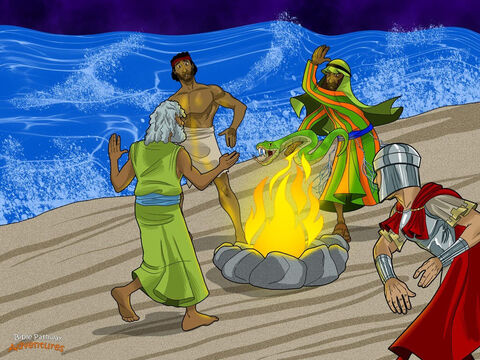 "Just as God had promised, everyone reached the shore safely. They had arrived on the island of Malta. The people of Malta wanted to help the men. They made a huge bonfire on the beach so the men could get warm. <br/>Paul and the men crowded around the roaring fire, laughing and stamping their feet. They were happy to be warm and dry again. Paul was pleased to be on dry land for the Feast of Tabernacles. He quietly thanked God for saving the men's lives. <br/>As Paul stood by the fire, a poisonous snake slithered towards him and bit him on the hand. ""This man must be a murderer!"" cried the locals. ""He survived the shipwreck, but he won't survive this snake bite."" <br/>The people watched Paul carefully to see what would happen. But he tossed the snake into the fire without being hurt. Everyone shook their heads in amazement. ""This man must be a god!"" they said. ""How else could he still be alive?"" – Slide 14"