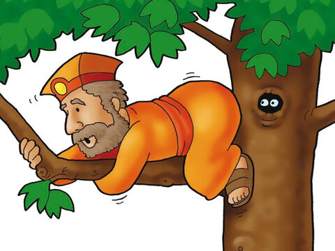 But one man in the crowd could not see Jesus! Look, it's Zacchaeus! He was so short he had to climb up into a big tree just to get a peek at Jesus. – Slide 3
