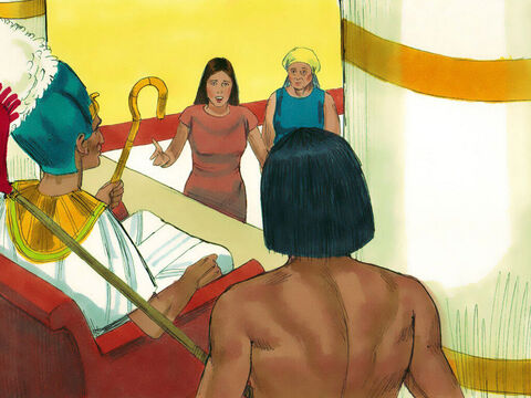 Exodus 1 v 18-19 Pharaoh summoned the midwives to ask why the baby boys were not killed. The excuse they gave was that the Hebrew women were giving birth to baby boys before they had time to get to them. – Slide 11