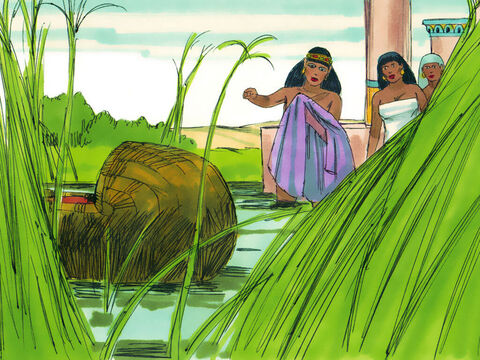 Exodus 1 v 5 Unexpectedly Pharaoh's daughter came down to the river to bathe. She spotted the basket and sent one of her attendants to fetch it. – Slide 18