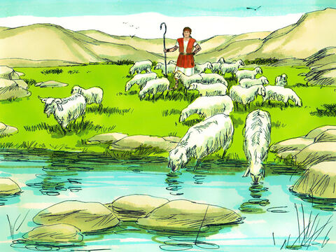 David was back in Bethlehem looking after his father's sheep. – Slide 5
