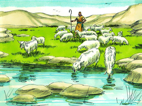 When he was young, David cared for his father's sheep. He knew that God would care for him that way: 'The Lord is my Shepherd, I have everything I need' (Psalm 23). – Slide 4