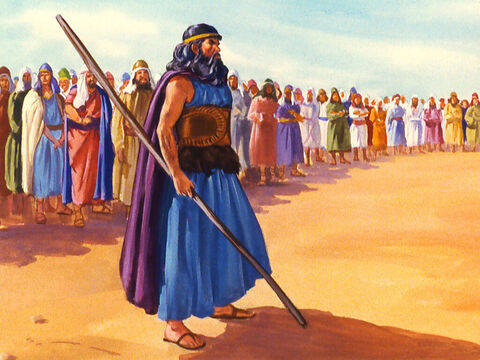Elijah proclaimed, 'I am a lone prophet of the Lord but Baal has 450 prophets. – Slide 25
