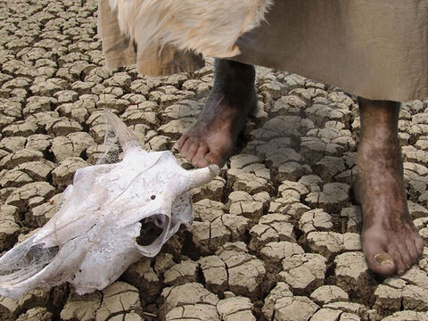 During this time not a drop of rain fell and there was no early morning dew. King Ahab searched everywhere for Elijah but could not find him. Plants, crops and animals started dying of thirst. – Slide 11