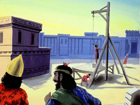 In the meantime, Haman was building gallows for Mordecai's execution. – Slide 31
