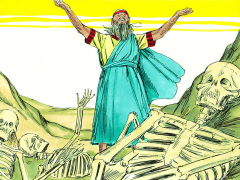 Ezekiel spoke as God had commanded. There was a sudden rattling as the bones came together, bone by bone, to form skeletons. – Slide 5