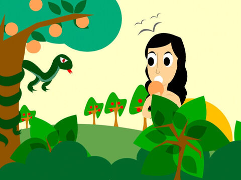 One day as Eve was walking in the garden a talking snake, who was an enemy of God, tempted her to eat fruit from the forbidden tree. Eve replied, 'God told us not to eat the fruit of that tree or even touch it as being disobedient would means we could no longer be friends with God.'<br/>'That's not true,' the snake lied. 'The fruit of that tree will make you very clever, like God.' <br/>So Eve ignored God's warning, took some forbidden fruit and ate it. – Slide 5
