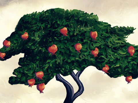 God said to Adam, 'You must understand, do not eat the fruit of this one tree, or you will die! Please obey this important command!' – Slide 2