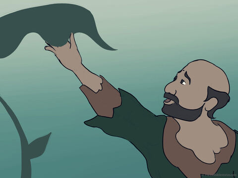 God made a vine grow to cover Jonah's head. <br/>The vine gave Jonah shade and this made him glad. – Slide 39