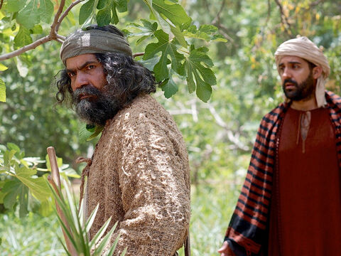 Peter remembered and said to Jesus, 'Rabbi, look! The fig tree you cursed has withered!' – Slide 5