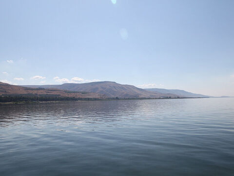 Josephus was able to gather 230 boats on Galilee in the first century, so there must have been more than this in operation. Many conclude that seven of Jesus' disciples were fishermen - Andrew, Simon Peter, James, John, Thomas, Philip and Nathaniel. – Slide 5