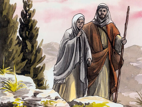 … they returned to Jerusalem to look for Him. – Slide 6