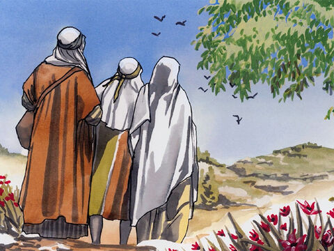 Yet His parents did not understand the remark He made to them. Then He went down with them and came to Nazareth, and was obedient to them. – Slide 11