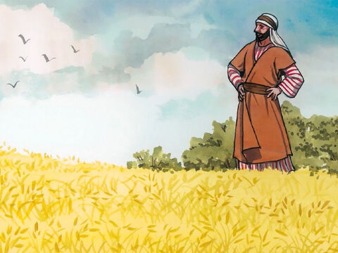 """'Don't you say, """"There are four more months and then comes the harvest?"""" I tell you, look up and see that the fields are already white for harvest! The one who reaps receives pay and gathers fruit for eternal life, so that the one who sows and the one who reaps can rejoice together.' – Slide 12"""