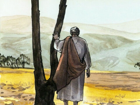 Yet Jesus himself frequently withdrew to the wilderness and prayed. – Slide 7
