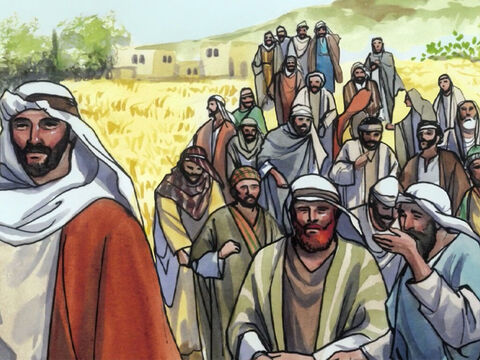 … and His disciples picked some heads of wheat, rubbed them in their hands, and ate them. – Slide 2