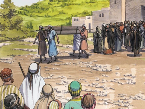 Jesus went to a town called Nain, and His disciples and a large crowd went with Him. – Slide 1