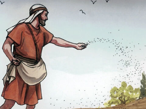'And as he sowed, some seeds fell along the path … – Slide 4