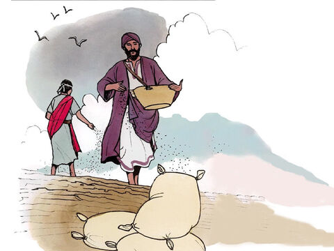 'The kingdom of heaven is like a person who sowed good seed in his field. – Slide 2