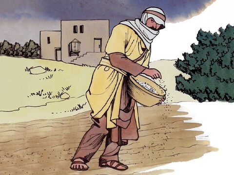 'But while everyone was sleeping, an enemy came and sowed weeds among the wheat and went away. – Slide 3