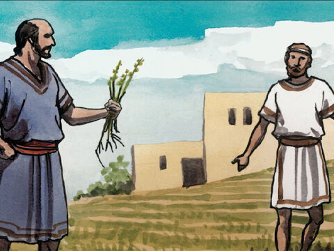 'So the slaves of the owner came and said to him, 'Sir, didn't you sow good seed in your field? Then where did the weeds come from?' – Slide 5
