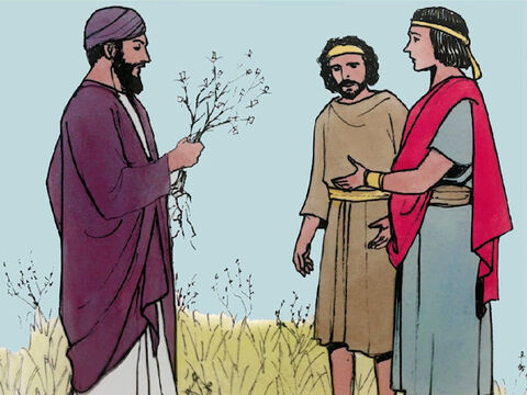 """'He said, """"An enemy has done this."""" So the slaves replied, """"Do you want us to go and gather them?"""" But he said, """"No, since in gathering the weeds you may uproot the wheat with them. Let both grow together until the harvest. – Slide 6"""