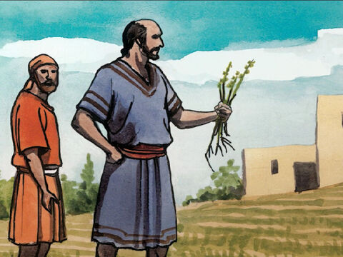 And His disciples came to Him saying, 'Explain to us the parable of the weeds in the field.' – Slide 16