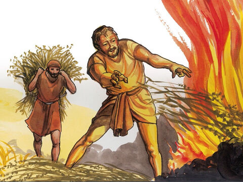 'They will throw them into the fiery furnace, where there will be weeping and gnashing of teeth. – Slide 21