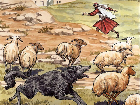 'The hired hand, who is not a shepherd and does not own sheep, sees the wolf coming and abandons the sheep and runs away. – Slide 10