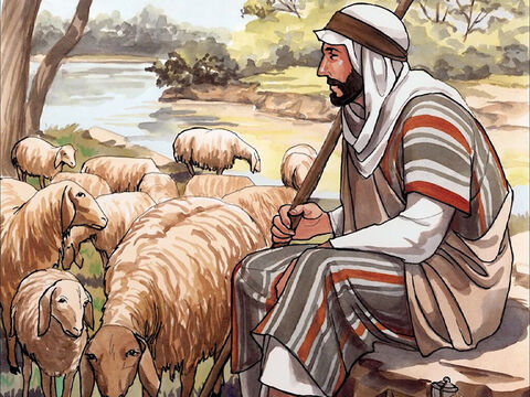 'I am the good shepherd. I know my own and my own know me – just as the Father knows me and I know the Father – and I lay down my life for the sheep. – Slide 12