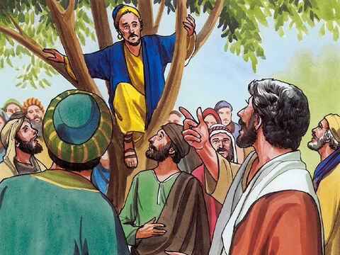 And when Jesus came to that place, he looked up and said to him, 'Zacchaeus, come down quickly, because I must stay at your house today.' – Slide 5