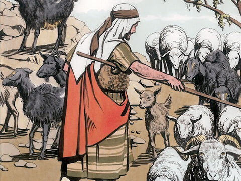 … and He will separate people one from another like a shepherd separates the sheep from the goats. He will put the sheep on his right and the goats on His left. – Slide 3
