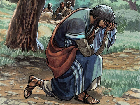He went away from them about a stone's throw, knelt down, and prayed, 'Father, if you are willing, take this cup away from me. Yet not my will but yours be done.' – Slide 3