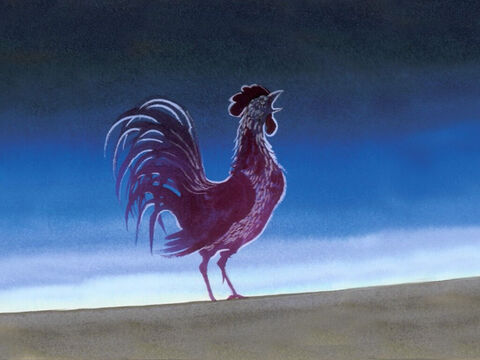 At that moment while he was still speaking, the rooster crowed. – Slide 5