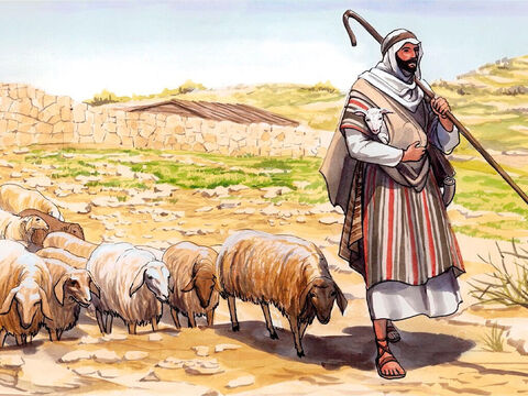 Jesus  told him, 'Shepherd my sheep.' – Slide 14