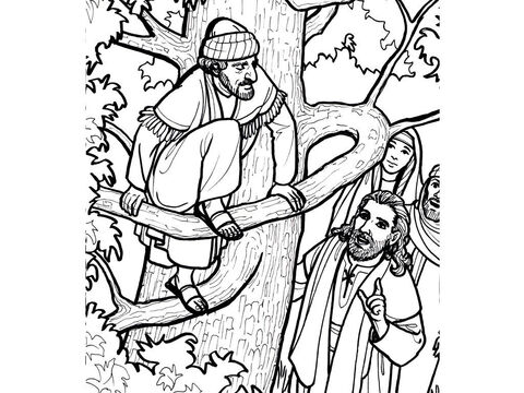 Jesus stops to talk to Zacchaeus, the tax collector, who has climbed into a sycamore tree. <br/>Luke 19:1-10 – Slide 12