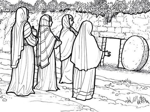 Women bring spices but find the tomb is empty. <br/>Matthew 27:57-28:20, Mark 16:1-8, Luke 24:1-12, 36-49, John 20-21 – Slide 7