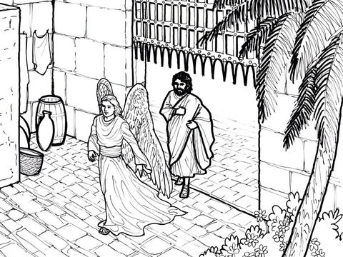 An angel leads Peter out of Prison. Acts 12:1-18 – Slide 8