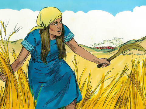 Whenever the Israelites were ready for harvest, marauders from Midian, Amalek, and the people of the east would attack Israel and destroy their crops. – Slide 2