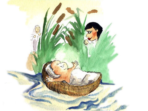 That evening, Pharaoh's daughter went down to the river to bathe.  She noticed the strange basket floating in the river. 'Fetch that basket,' she said to her servant girl. When she saw the baby boy, she loved him. Miriam came out of hiding and asked her, 'Would you like for me to get an Israelite woman to take care of the baby?'<br/>'Yes, I would,' answered the princess. – Slide 4
