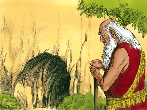 Abraham was now a very old man and his wife Sarah had died. She was buried in a cave at Mamre at Hebron in the land of Canaan that Abraham had bought from the Hittites. – Slide 1